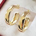 Cercei in culoarea aurului 14K - ZS1505
